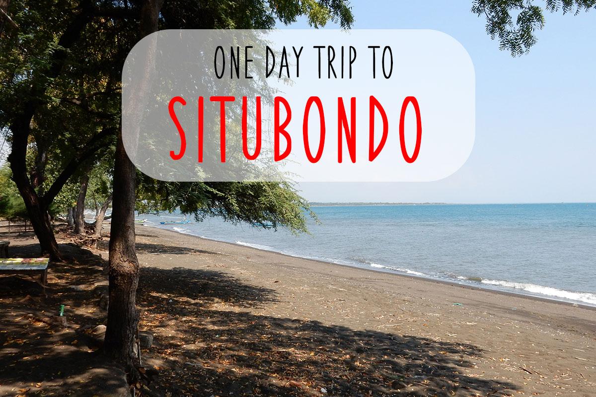 【前編】ジャワ島のシトゥボンドに来たら車を没収された話