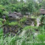 自然の中にひっそり佇むスバトゥ寺院へ