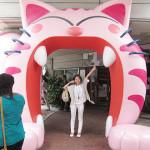 猫カフェ@お台場