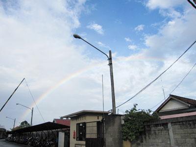 虹 photo