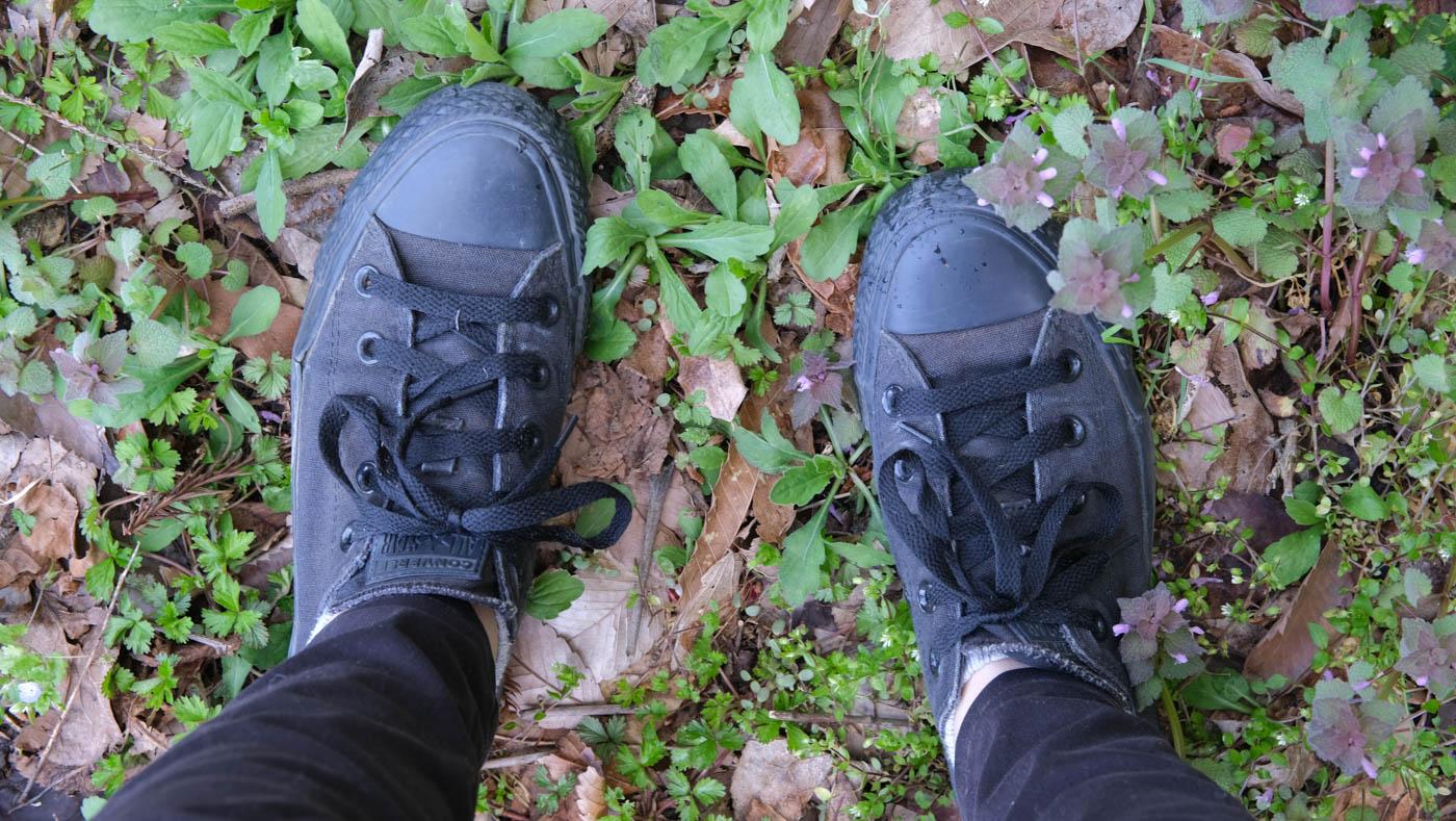 足元は靴が正解