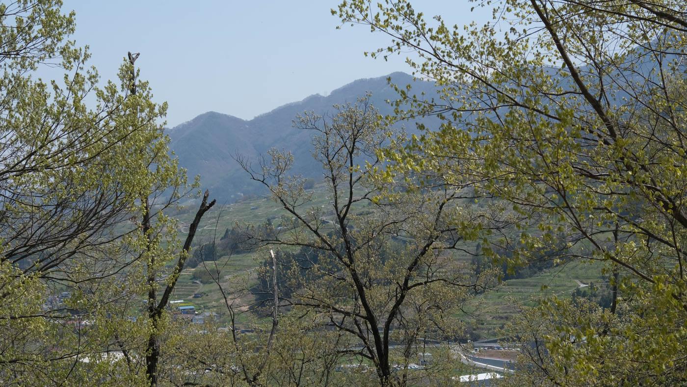 霊諍山からの眺め