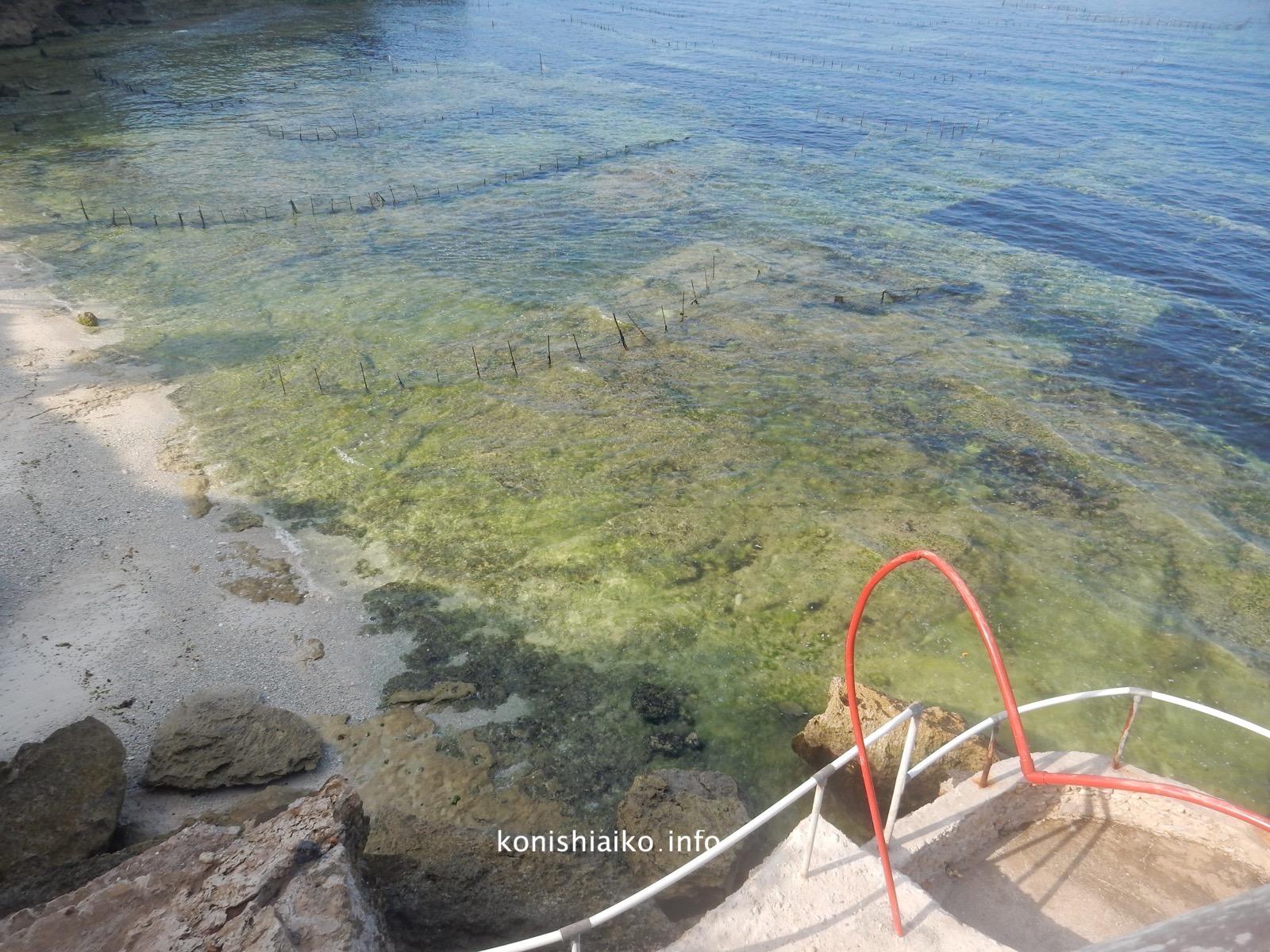 水は綺麗だけどい草を養殖しているのでシュノーケリングには不向き