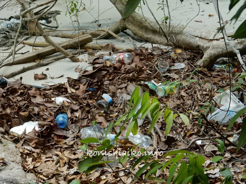 ペナン国立公園のゴミ