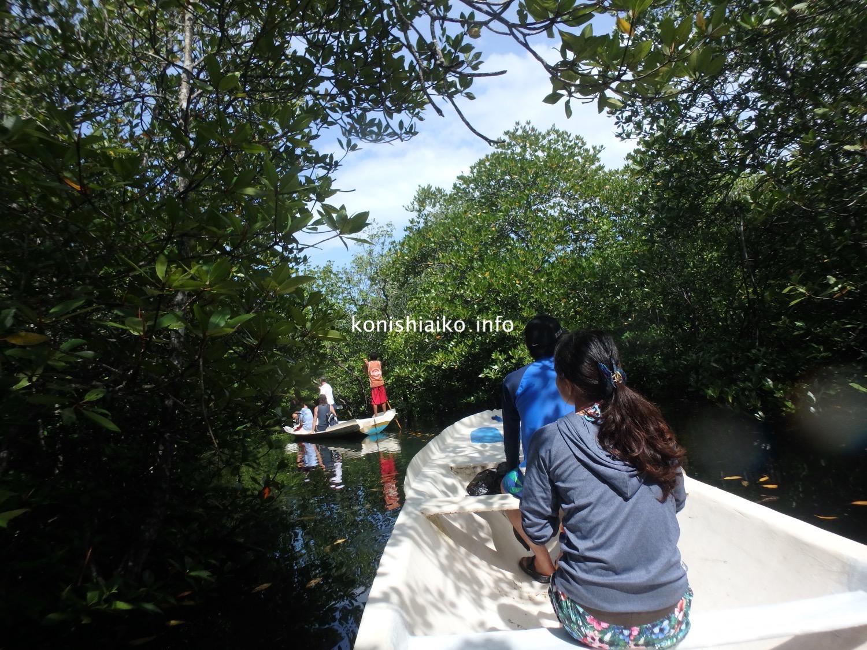 バリ島のマングローブクルーズ