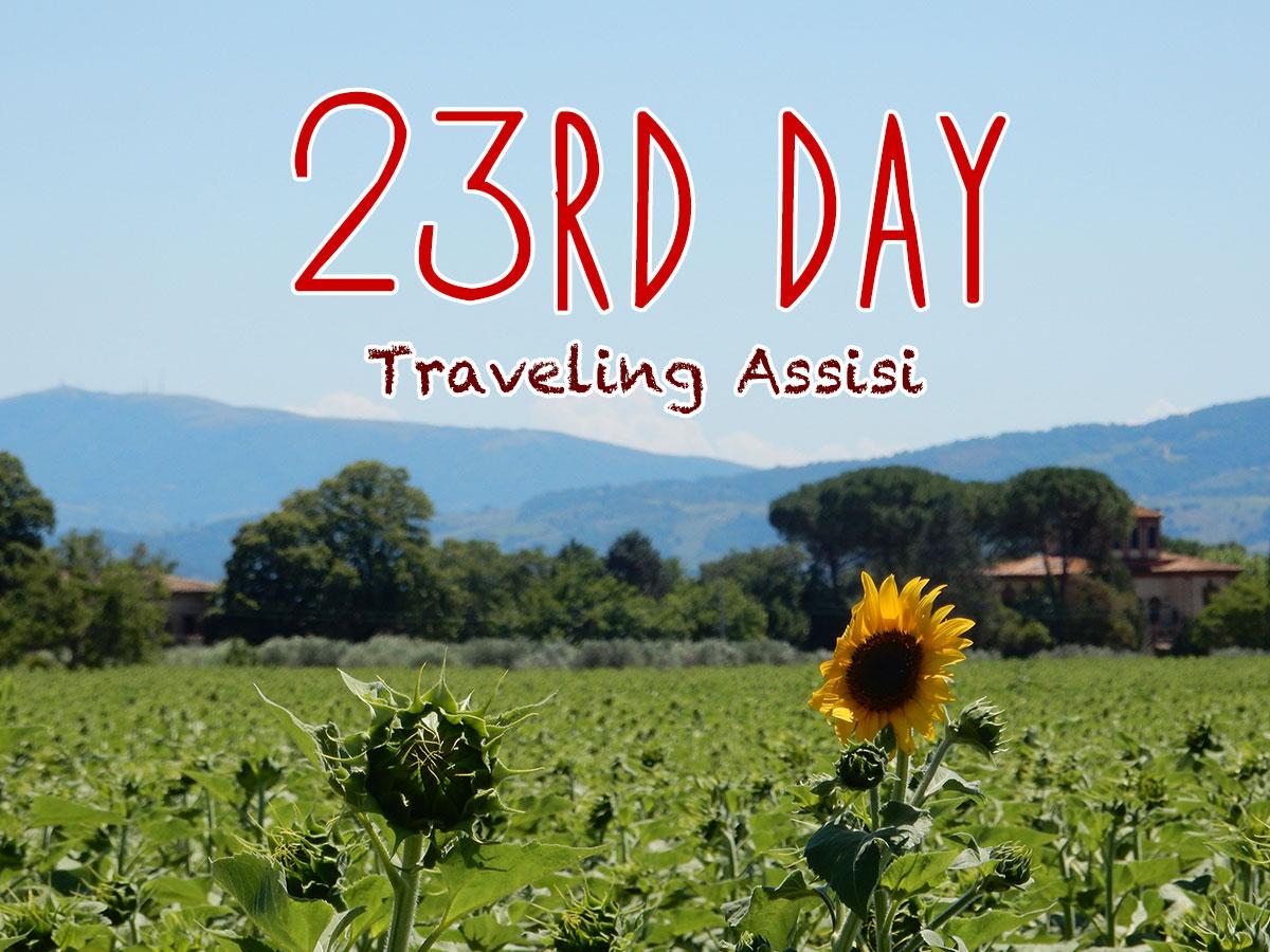 イタリア23日目・ひまわり畑を散歩、サンタマリア教会