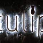 バリ島グルメ: 7つ星★★★★★★★評価のトルコ料理レストラン、チューリップ