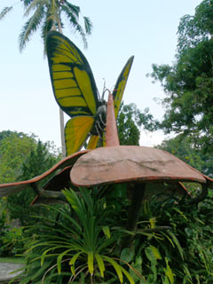 bali-butterfly-park1