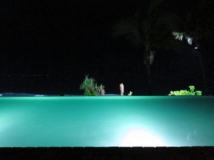 バリ島ポテトヘッドのプール