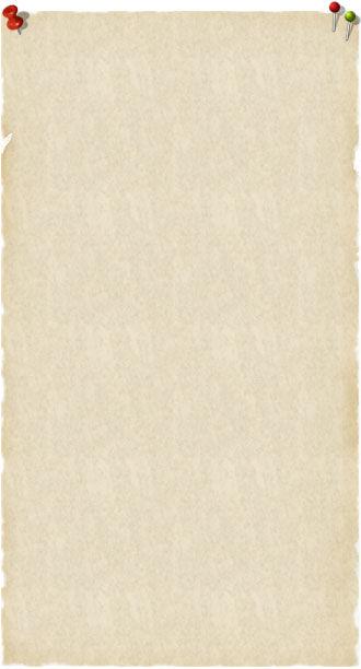 oldpaper330