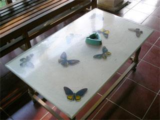 bali-butterfly-park6